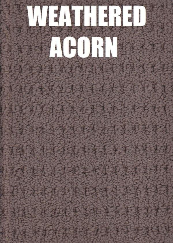 Weathered Acorn - Arlington Lane Solution Dyed Nylon Carpet