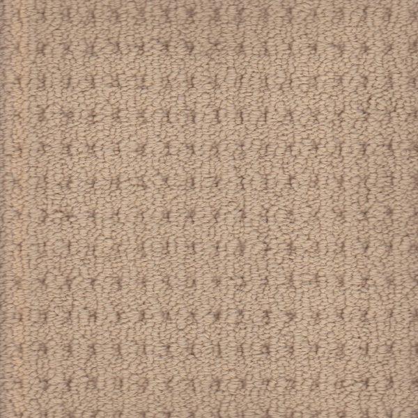 Arlington lane solution dyed nylon carpet