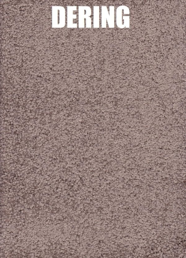 Dering - Roysdale Solution Dyed Nylon Carpet