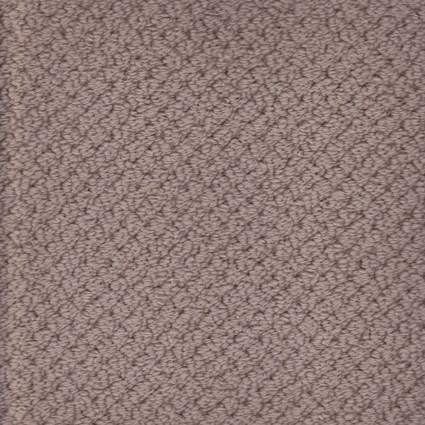 Elegant décor solution dyed nylon carpet