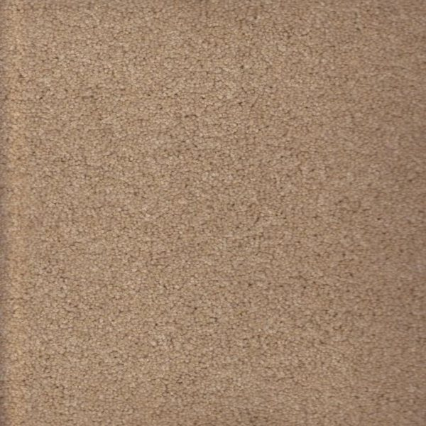 Fantasia carpet texture