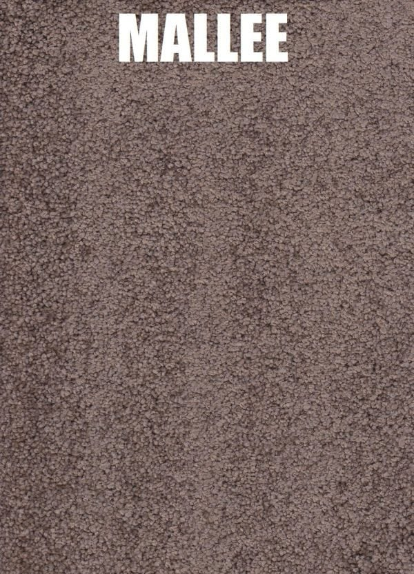 Mallee - Roysdale Solution Dyed Nylon Carpet