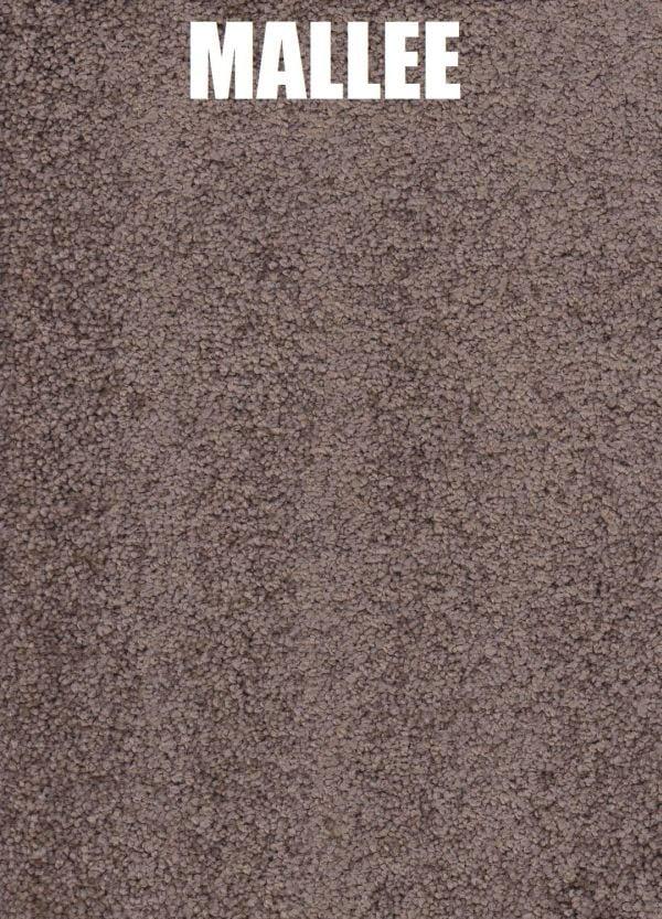 Mallee - Roysdale Solution Dyed Nylon Carpet