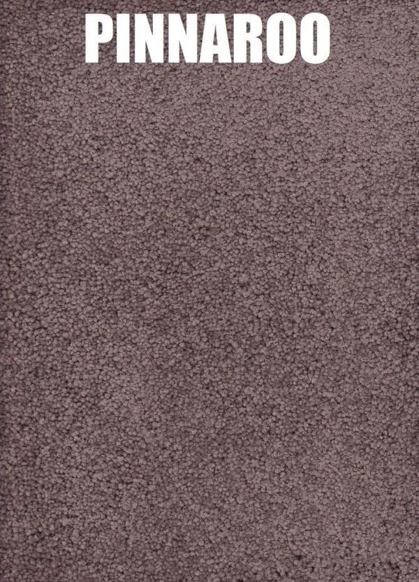 Pinnaroo - Roysdale Solution Dyed Nylon Carpet