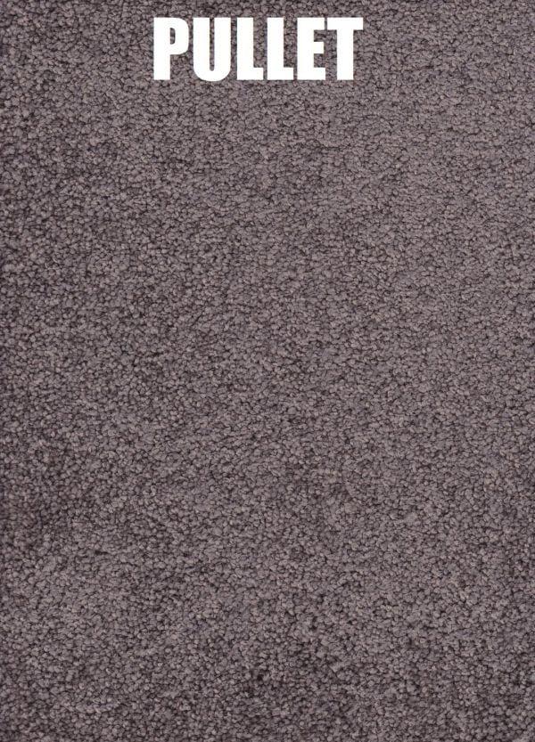 Pullet - Roysdale Solution Dyed Nylon Carpet