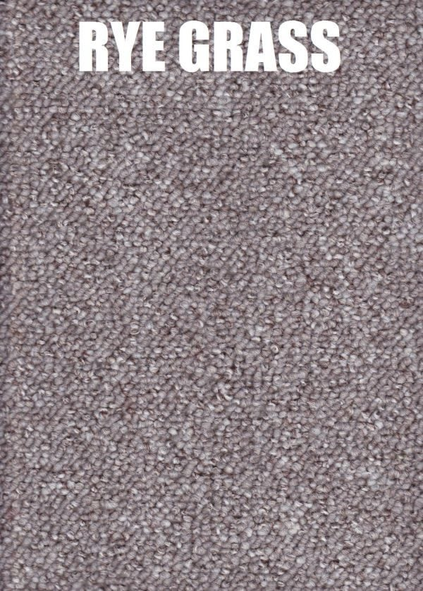 ryegrass - encounter polypropylene carpet