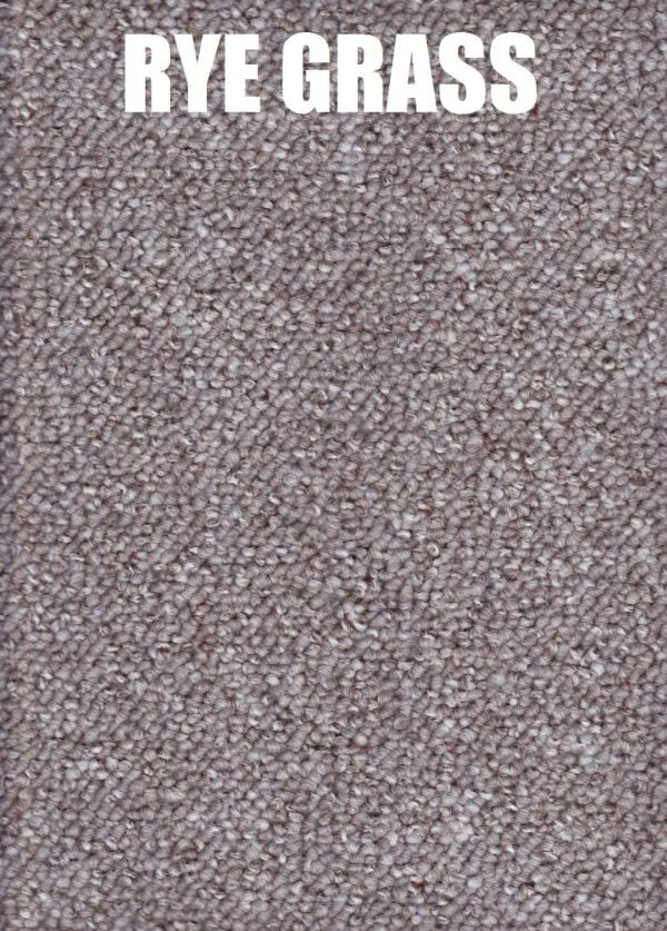 ryegrass - encounter polypropylene carpet