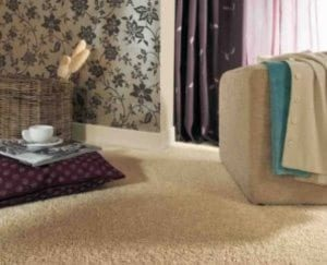 Beige Coloured Solution Dyed Nylon Carpets