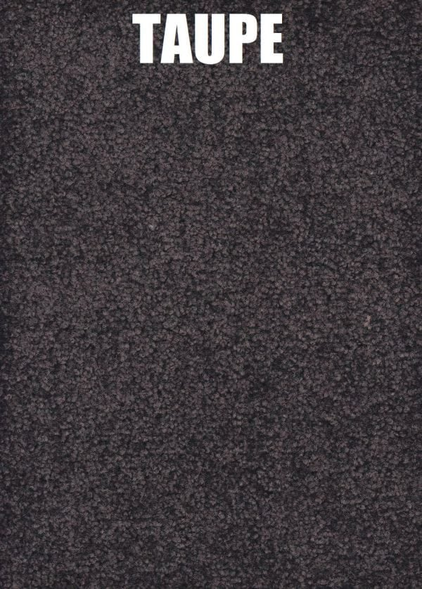 TAUPE Carpet texture