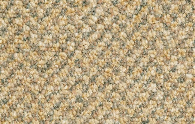 Medalion Commercial Grade Carpet I Sydney I 0420carpet